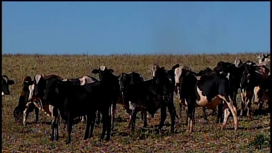 Furtos e roubos em fazendas preocupam moradores da região de Perdizes