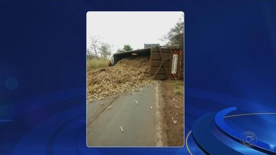 Caminhão canavieiro tomba em vicinal entre Jales e Dirce Reis