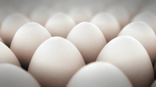 Brasil produziu 39 bilhões de ovos em 2016