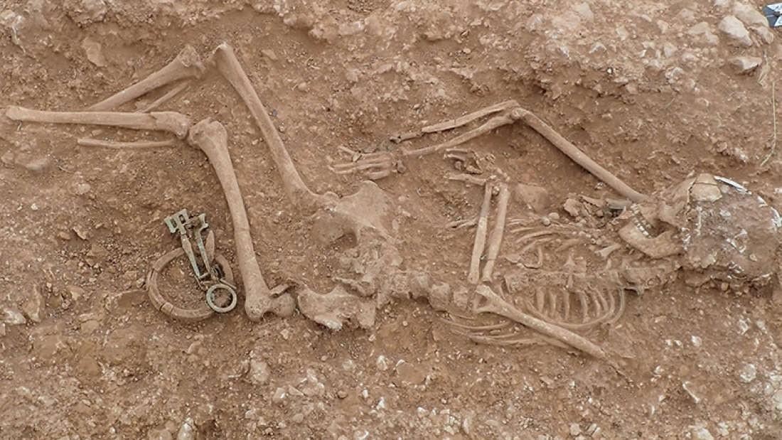 Descoberta aconteceu no Reino Unido (Foto: Divulgação/ Universidade de Sheffield)