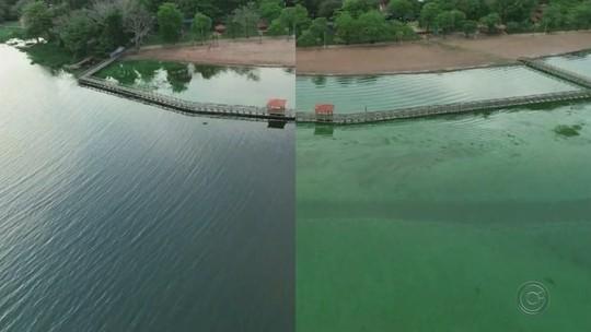 Coloração verde do Rio Tietê é amenizada, mas bióloga alerta que poluição continua