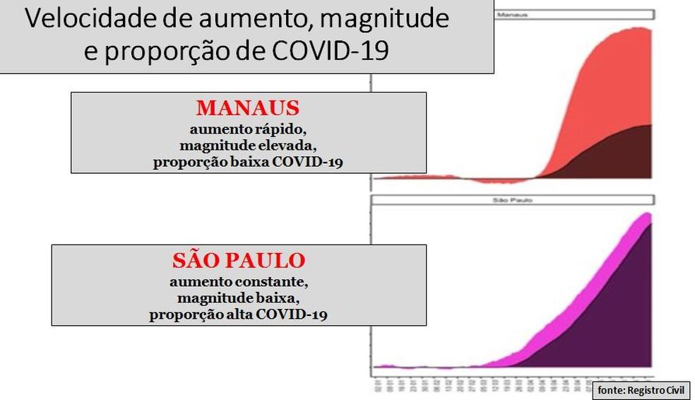 """Comparativos do """"excesso de mortes"""" entre as cidades de Manaus e São Paulo (as cores mais escuras representam mortes confirmadas por Covid-19) — Foto: Arquivo pessoal"""