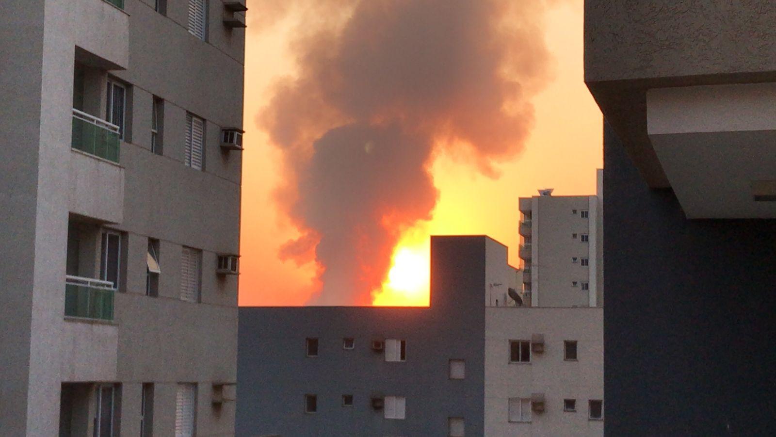Incêndio atinge canavial às margens da Rodovia Mário Donegá entre Dumont e Ribeirão Preto, SP