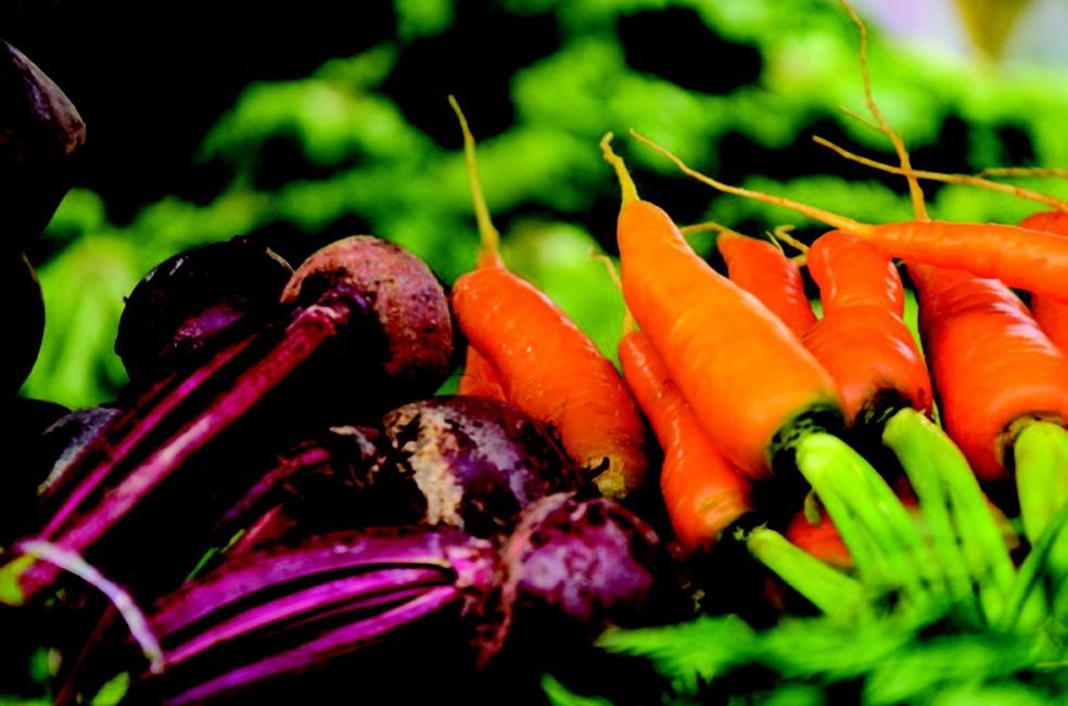 Produtos orgânicos vão ser vendidos na feira (Foto: Fotos Jansen Lube/ Secom PMS)