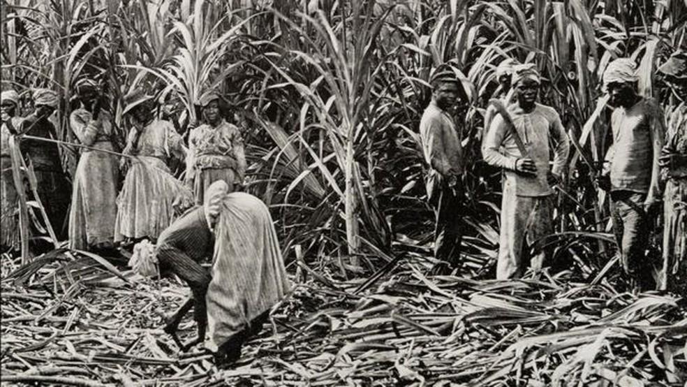 O Caribe e a América do Norte receberam mais pessoas escravizadas vindas de países do oeste da África — Foto: Getty Images via BBC