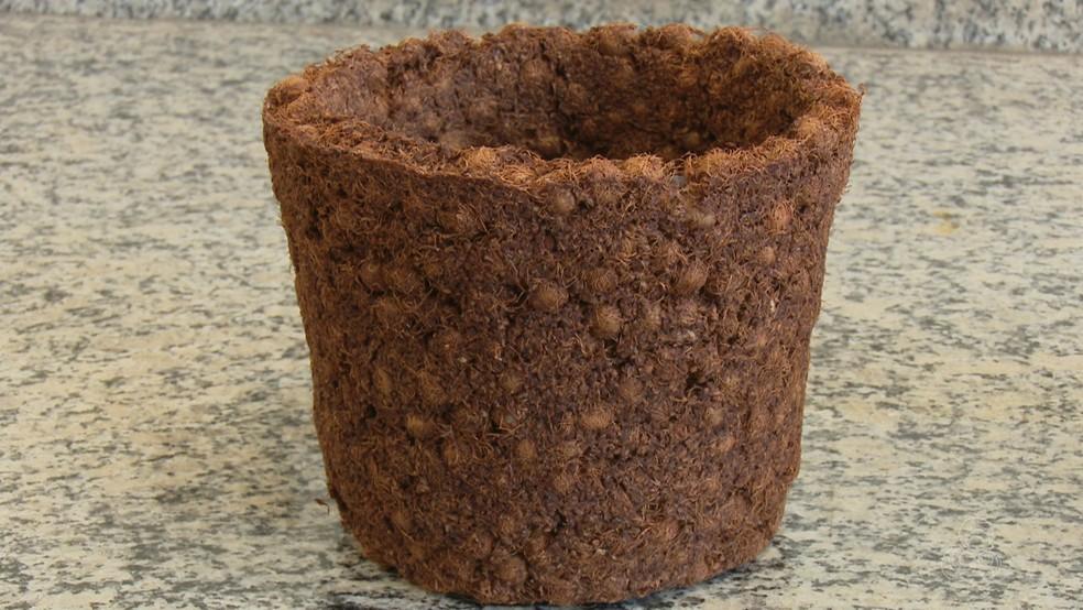 -  Vasos são embalagens ecologicamente usadas para plantas  Foto: Reprodução/Rede Amazônica