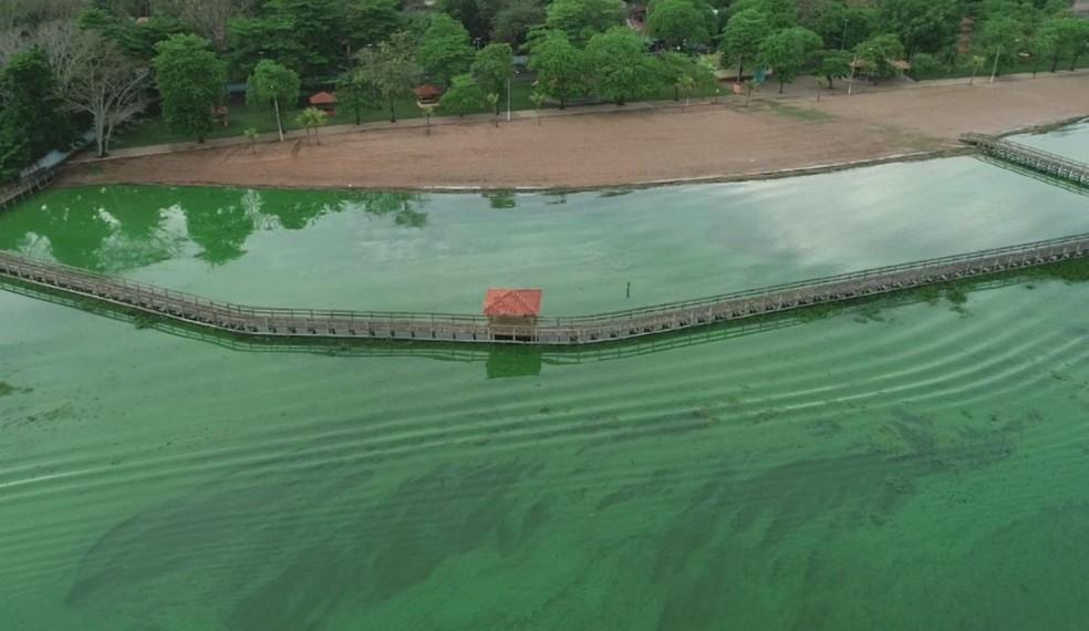 Poluição seria a causa da mudança da cor nas águas do Tietê em Arealva  — Foto: TV TEM / Reprodução
