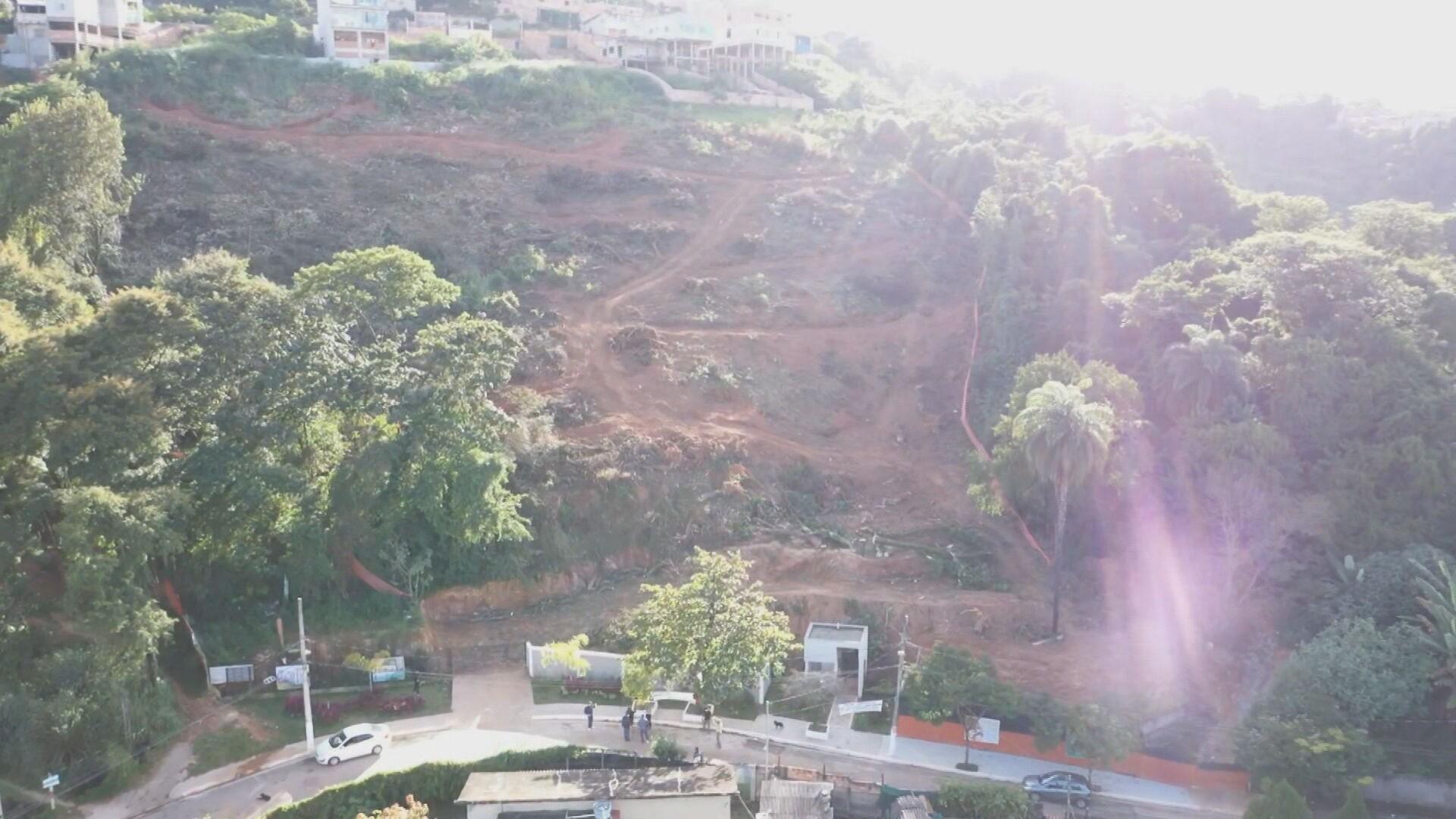 Justiça proíbe que construtora corte árvores na Mata da Represa, na Região Oeste de Belo Horizonte