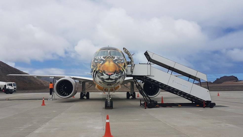 Pintura de tigre simboliza os tigres asiáticos (Foto: Embraer/Divulgação)