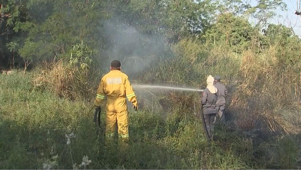 Fogo em Araçatuba foi controlado pelos bombeiros (Foto: Reprodução/TV TEM)