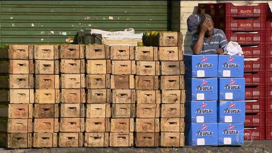 Protestos dos caminhoneiros têm impacto nos transportes e na alimentação do país