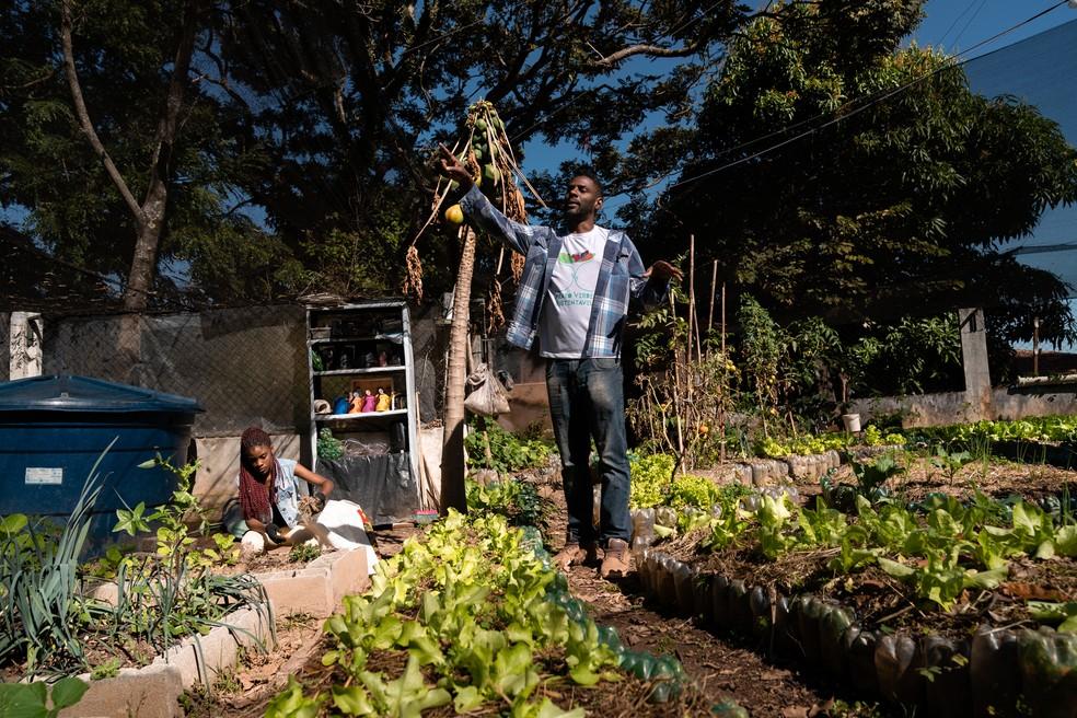 Foram utilizadas 9 mil garrafas PET para construir os canteiros da horta do Projeto Prato Verde Sustentável. Foto: Marcelo Brandt/G1