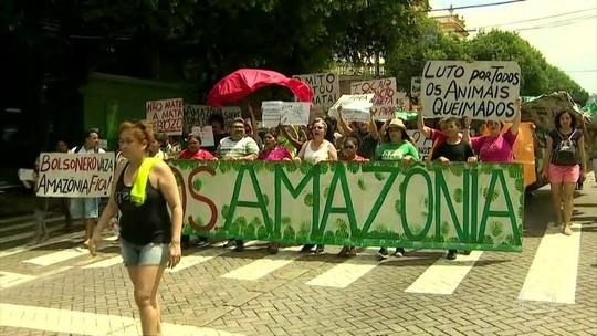 8 estados têm atos em defesa da Amazônia neste sábado