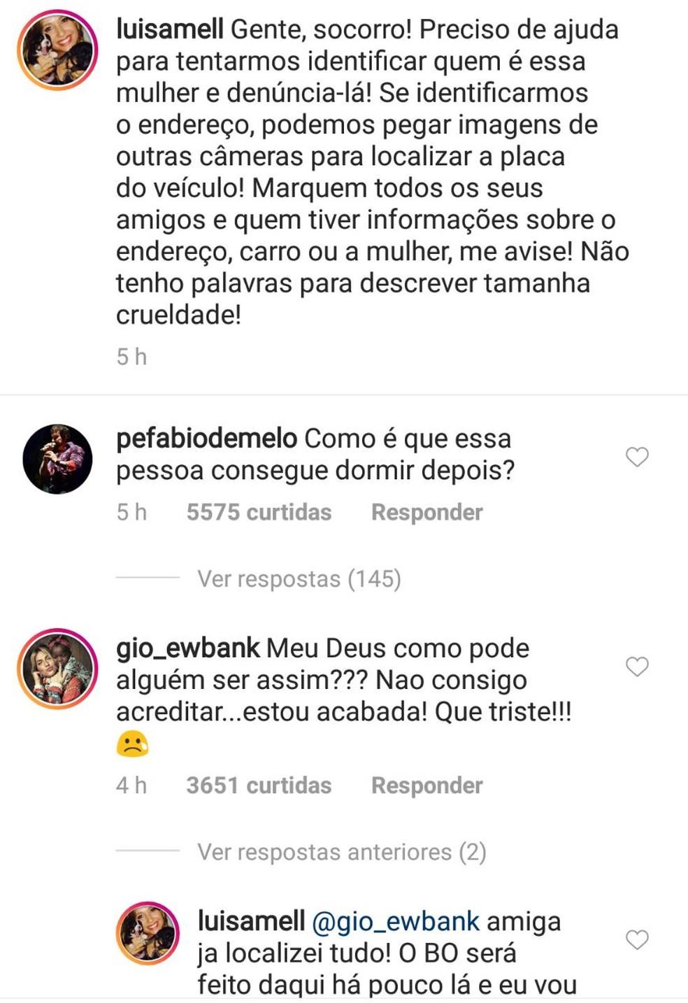 Artistas se posicionaram sobre o atropelamento dos cachorros em São Luís (Foto: Reprodução/Instagram)