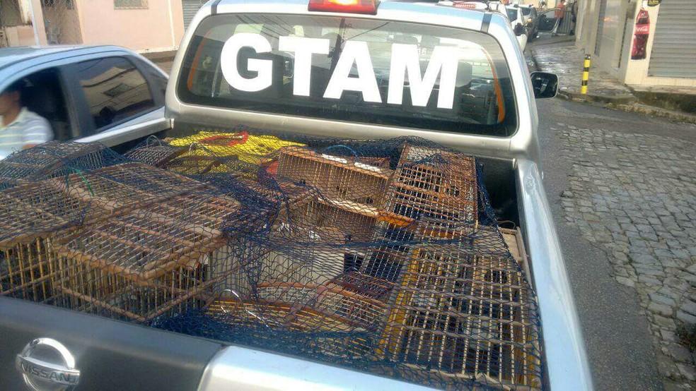 Apreensão desta terça-feira (26) em Guarabira, coibiu a venda ilegal das aves na feira de troca do bairro Cordeiro (Foto: Ten. Renan/4º BPM)