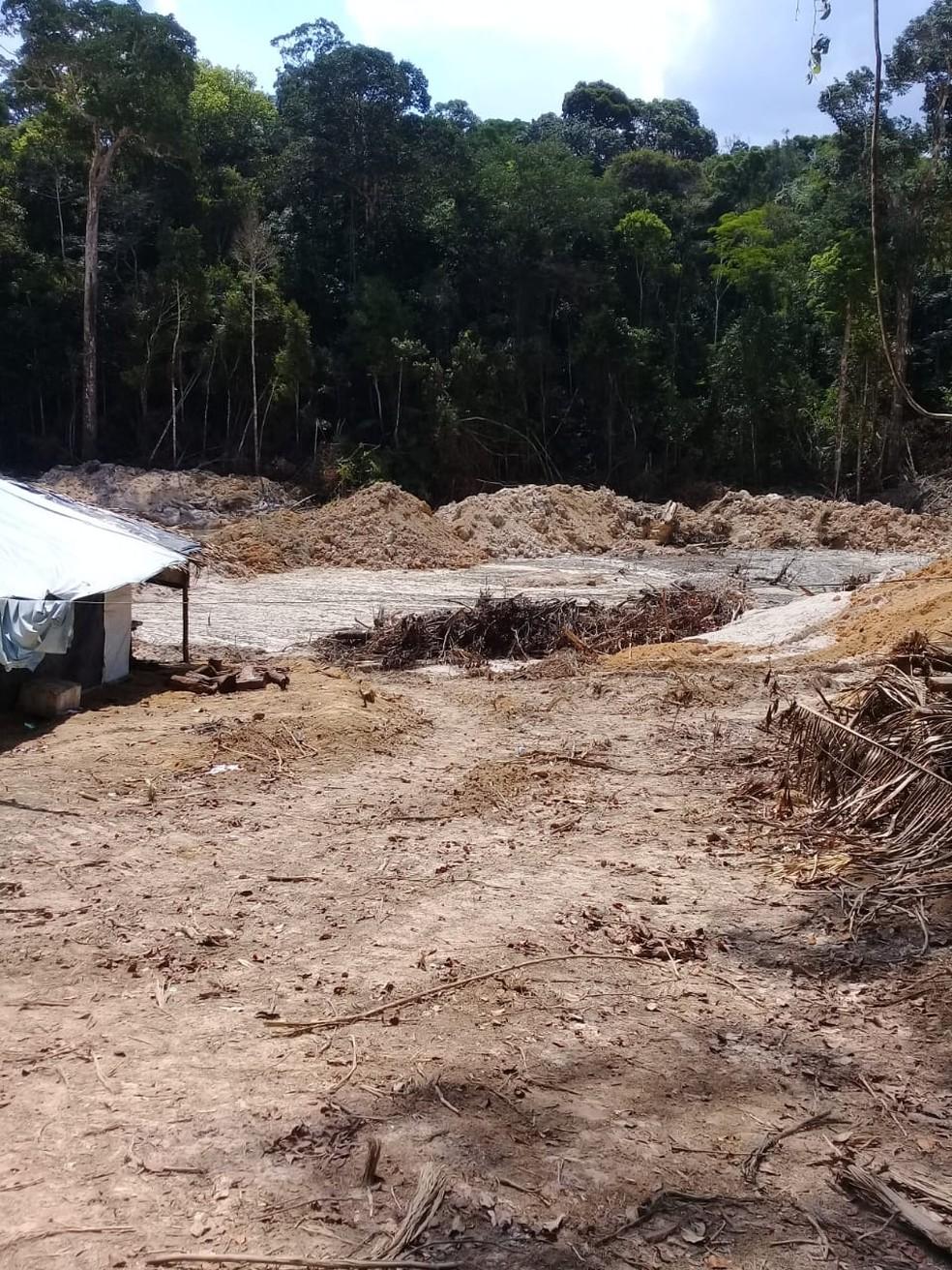 Operação foi realizada em Rondônia — Foto: PF/Divulgação