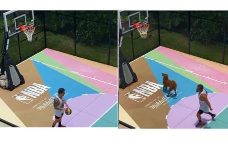 O ator e um de seus cães brincam na quadra de basquete  Reprodução