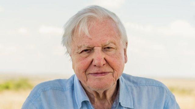 'Cada dia que passa é um dia perdido': o alerta de David Attenborough sobre mudança climática