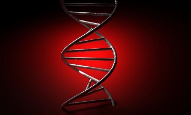 Discussões sobre DNA voltam à tona