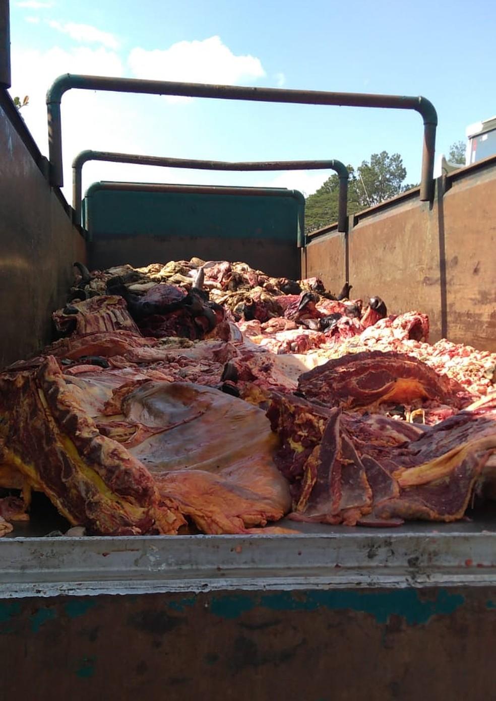 Polícia prende trio flagrado transportando carne clandestina em caminhão na Dutra em Pinda — Foto: Divulgação/Polícia Civil