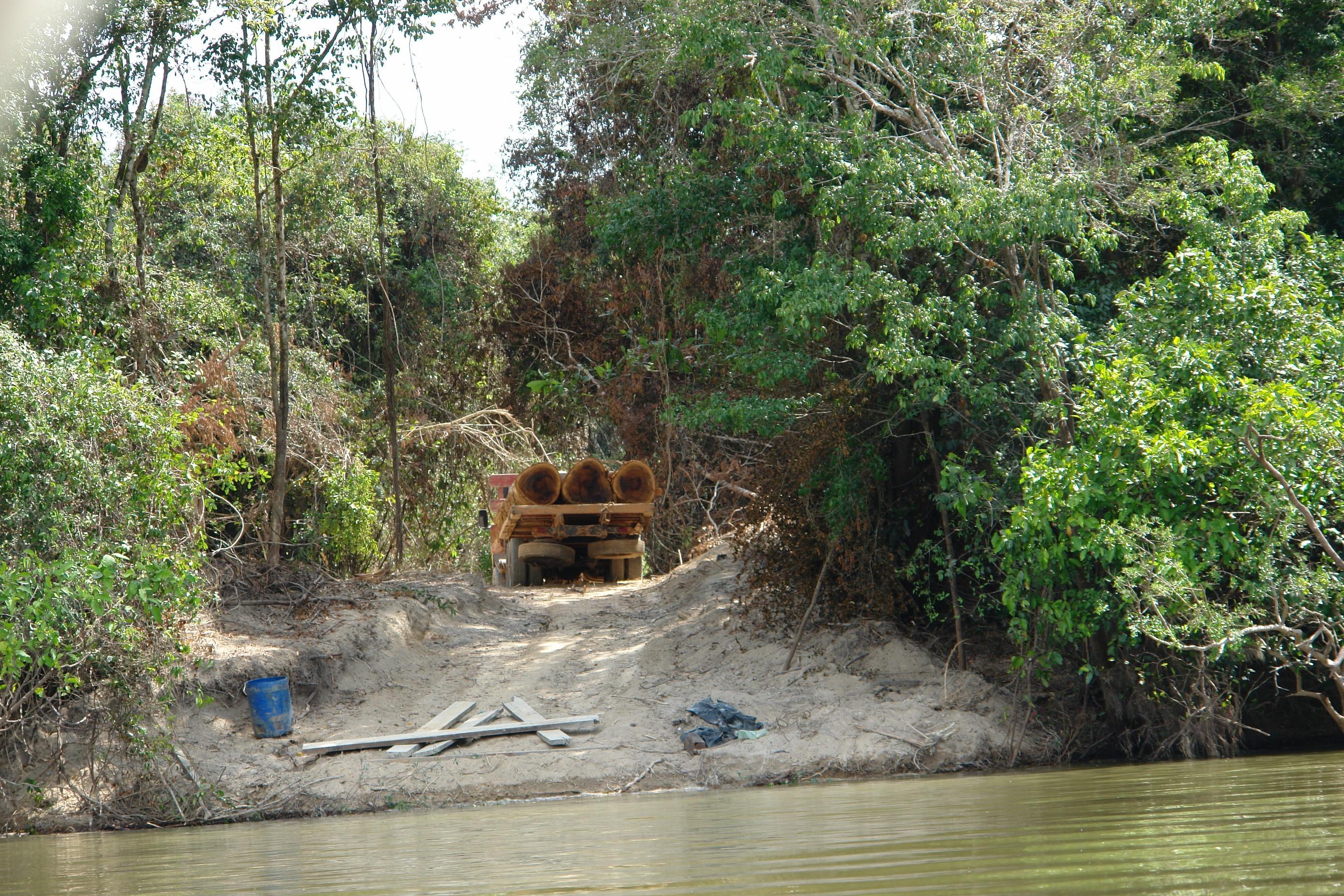 Desmatamento na margem do Rio Xingu. (Foto: Xingu Vivo)