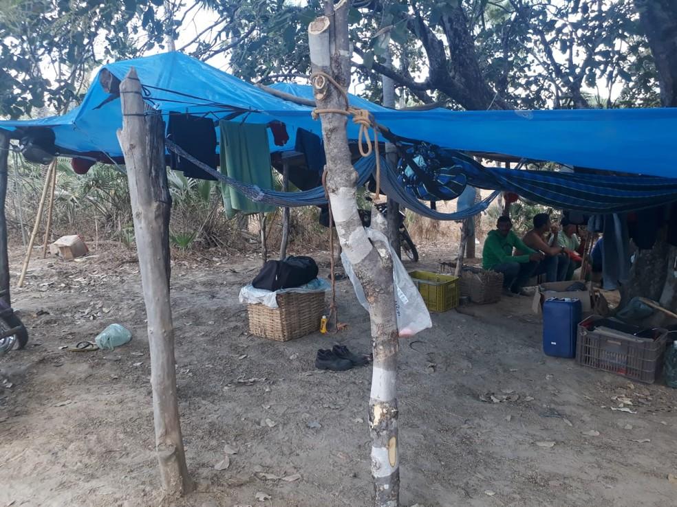 25 trabalhadores viviam em condições precárias em campo de extração de carnaúba na zona rural de São João da Serra, no Piauí — Foto: Divulgação