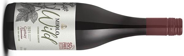 O Wild Gamay 2021: vinho tinto da Campanha Gaúcha