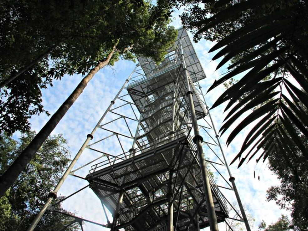 Torre tem 42 metros de altura. Para chegar ao topo, visitantes devem 'enfrentar' 242 degraus — Foto: Camila Henriques/G1 AM