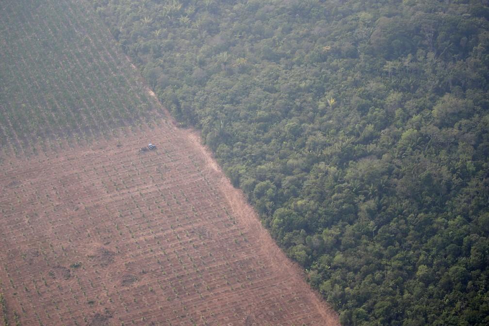 Foto aérea mostra um trator em plantações em área devastada na Amazônia perto de Porto Velho, em Rondônia, nesta quinta-feira (22) — Foto: Ueslei Marcelino/Reuters