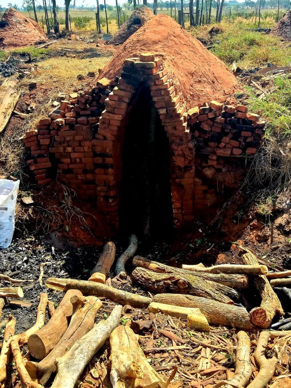 Segundo a polícia, carvoaria funcionava ilegalmente em Martinópolis — Foto: Polícia Militar Ambiental