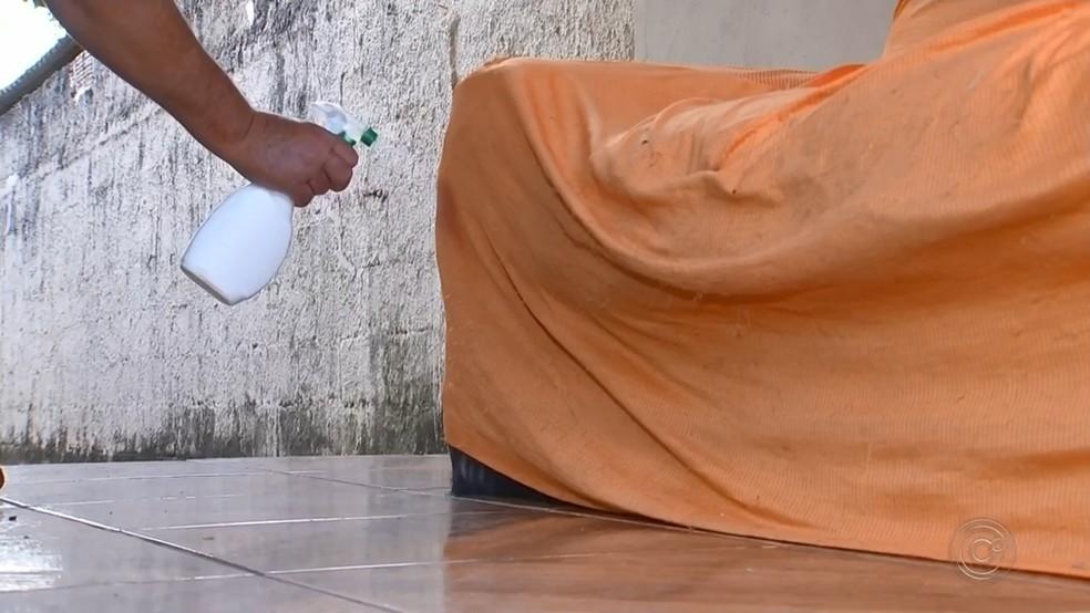 Borrifar água com pimenta do reino ajuda afastar o cão dos móveis — Foto: Reprodução/TV TEM