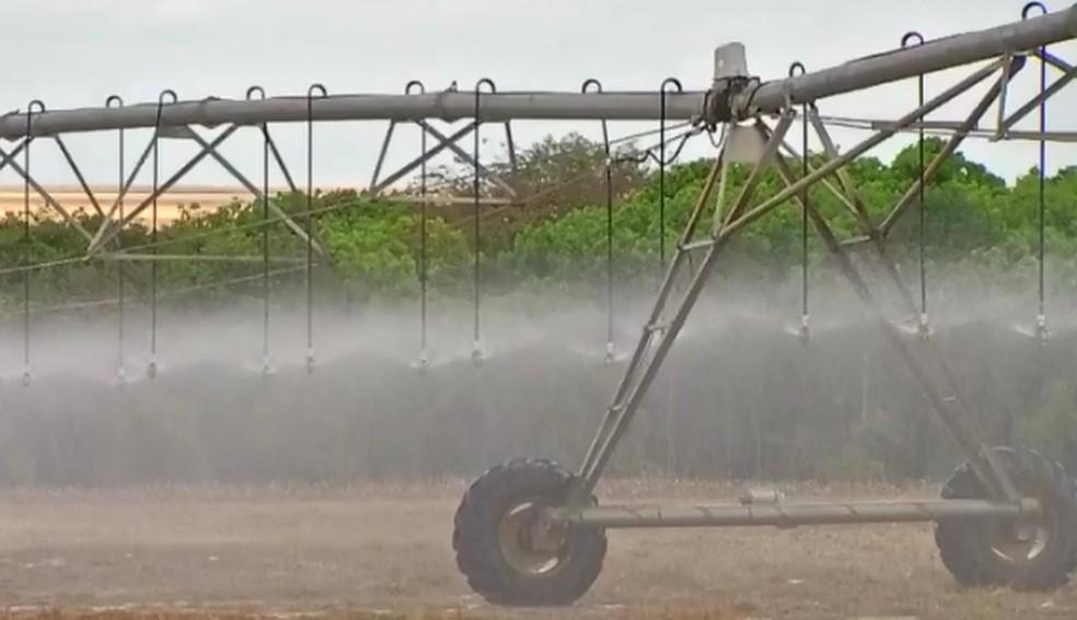 Produtores investem em irrigação para driblar as condições climáticas  — Foto: Reprodução/TVCA