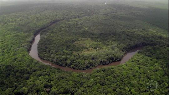 Inpe registra em junho aumento de 88% de desmatamento na Amazônia