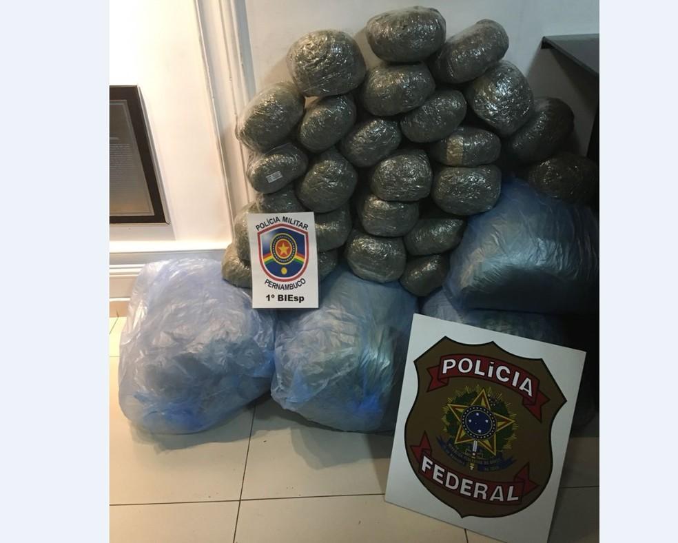 Total de 60 kg de maconha foram apreendidos dentro de um carro, em São Caetano (Foto: Polícia Federal/Divulgação)