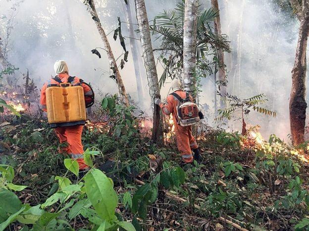 Houve um aumento de 84% nos focos de incêndios florestais em comparação com o ano passado (Foto: EPA via BBC)