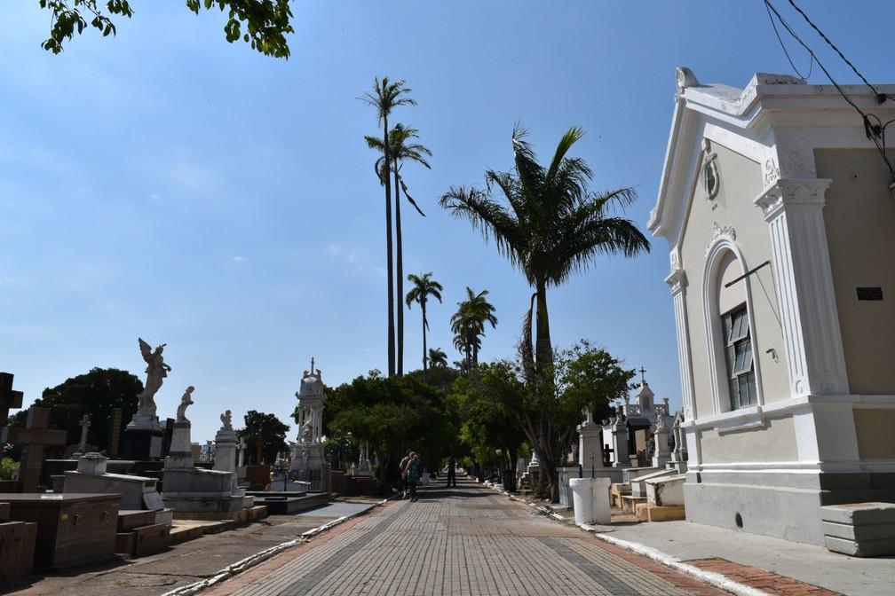 Via central do Cemitério da Saudade foi inspirada na rua Barão de Jaguara no século 19 — Foto: Rui do Amaral/G1