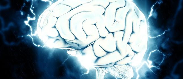 O cérebro é o órgão responsável por mandar os comandos para todo o corpo