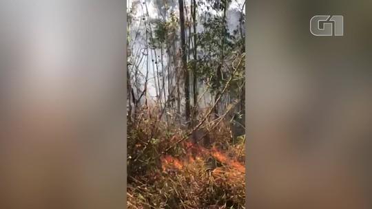 Bombeiros combatem queimada que já dura 20h em área de vegetação em Nova Friburgo, no RJ