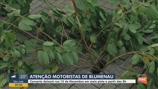 Reparos em rua causam alterações no trânsito no Centro de Blumenau