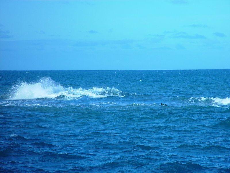 Aumento do mar pode prejudicar populações costeiras, meio ambiente e estruturas (Foto: Wikimedia Commons)
