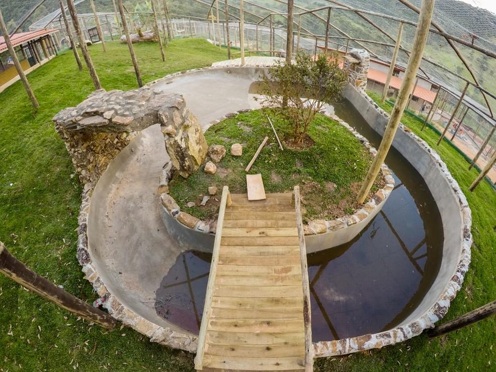 Ambiente que vai receber ursos Dimas e Kátia já está pronto em santuário de animais em Joanópolis — Foto: Biga Pessoa/ Rancho dos Gnomos