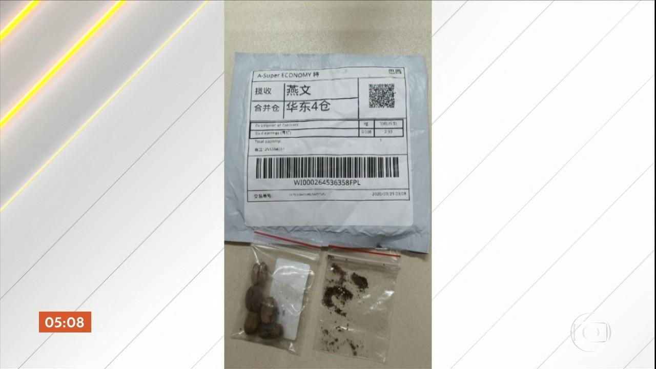Pacotes com sementes chegam da China sem que moradores de SC tenham feito qualquer pedido