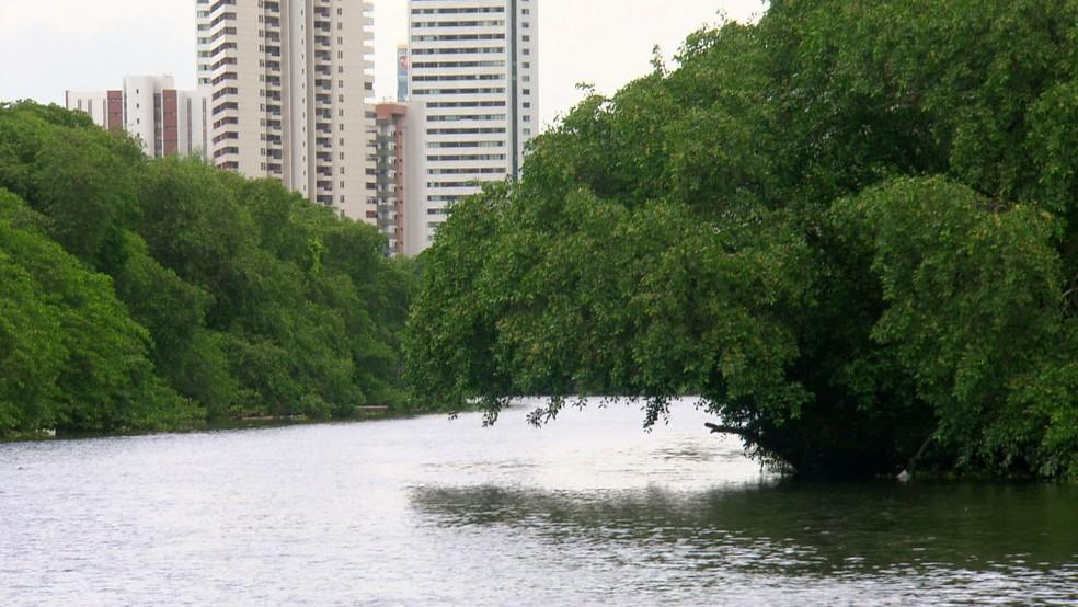 Rio Capibaribe corta o Recife — Foto: Reprodução/TV Globo