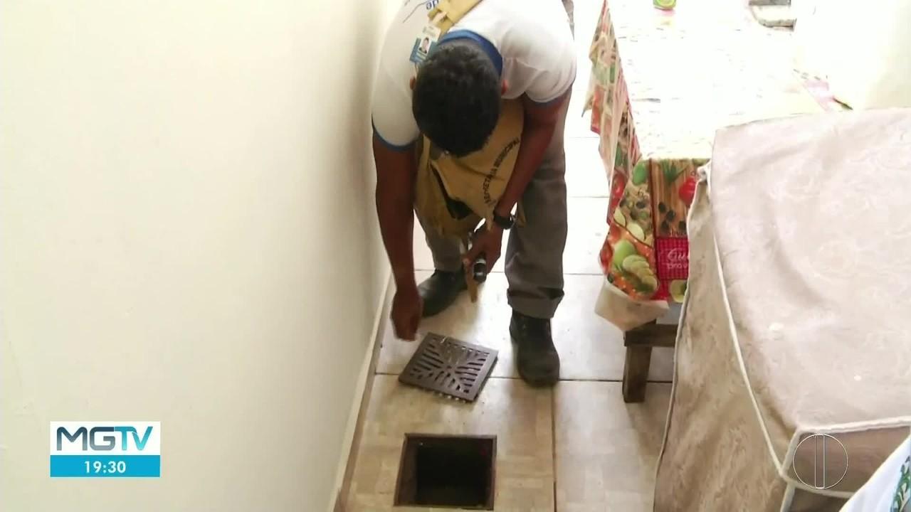Governador Valadares registra alto índice de infestação do Aedes aegypti