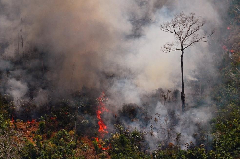 Número de incêndios registrados no Brasil aumentou significativamente em 2019, mas em alguns períodos entre 2002 e 2010 as quantidades registradas foram ainda maiores — Foto: Carl de Souza/AFP
