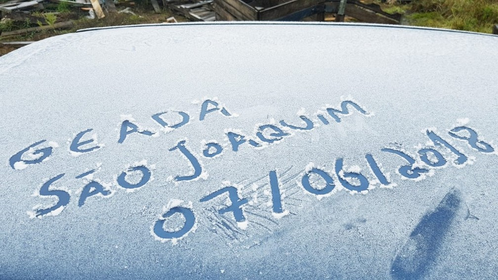 Geada em São Joaquim  (Foto: Mycchel Hudsonn Legnaghi/São Joaquim Online)