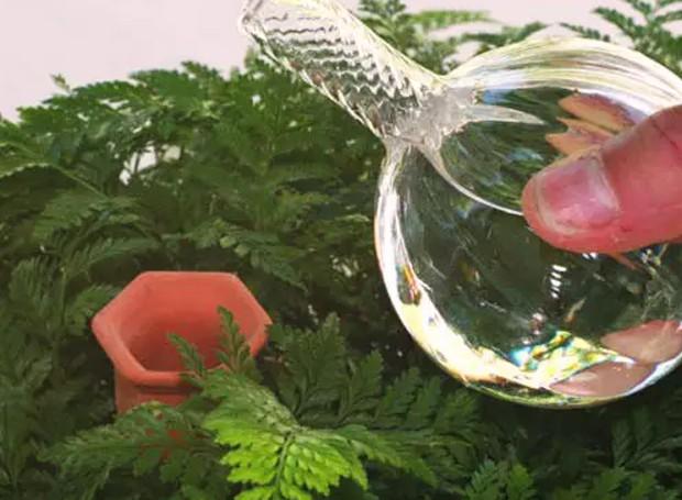 Plant Nanny - a água goteja direto debaixo da terra (Foto: Pinterest/ Reprodução)