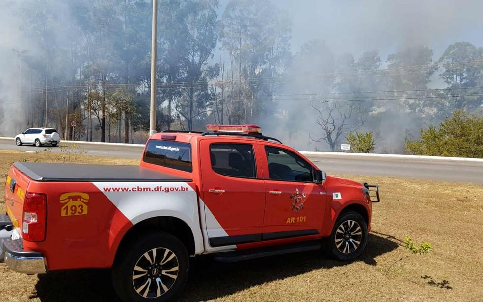 Fogo atinge vegetação às margens da L4 Sul, em Brasília (Foto: Corpo de Bombeiros do DF/Divulgação)