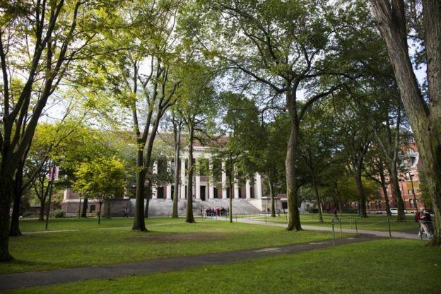 No último ano, 42.749 pessoas se candidataram a Harvard, mas apenas 1.962 conquistaram uma vaga (Foto: DIVULGAÇÃO/HARVARD UNIVERSITY via BBC News Brasil)