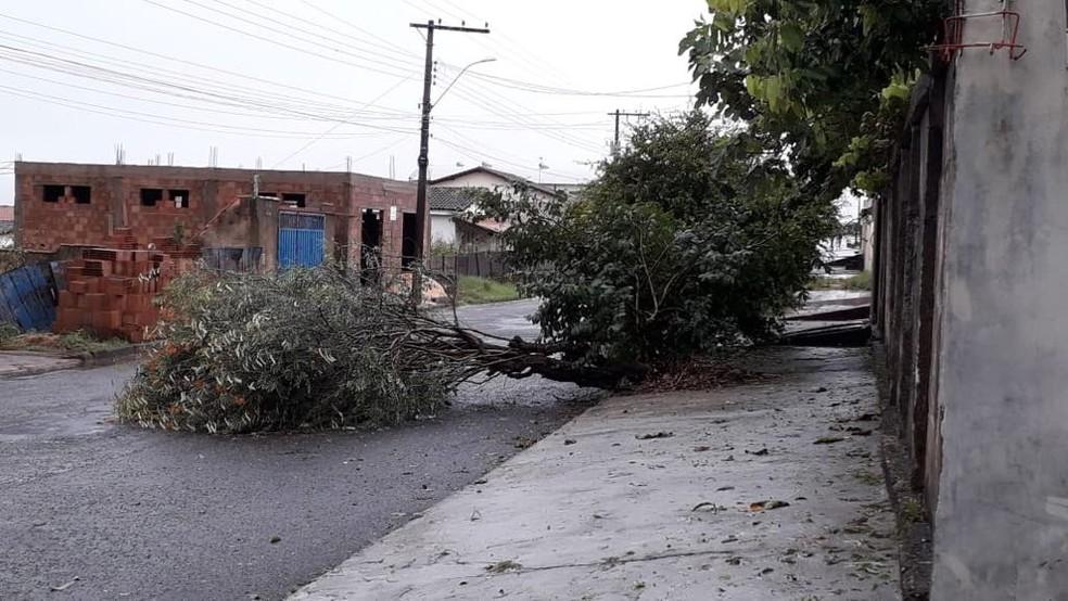 Queda de árvores também foram registadas, segundo o Corpo de Bombeiros de Araxá — Foto: César Campos/TV Integração